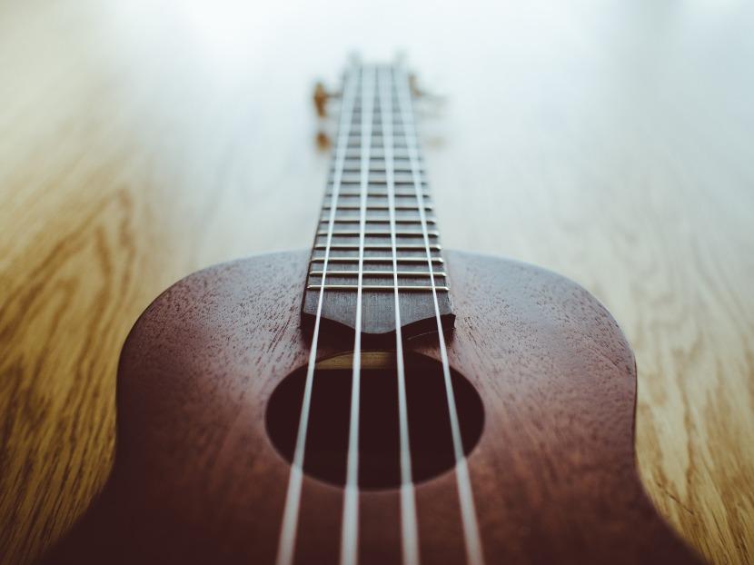 ukulele-923482_1920.jpg